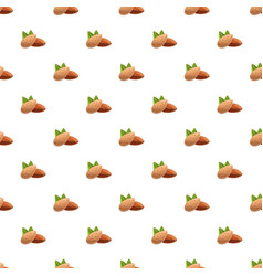 almonds pattern seamless vector image