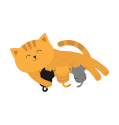 cat mother feeding kittens mom kitty laying on vector image