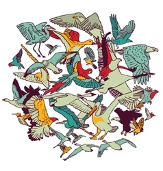 Fly birds round colors isolate on white vector image