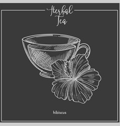 Hibiscus tea cup chalk sketch icon for vector