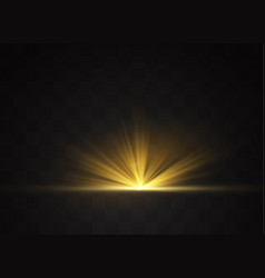 Light flare special vector