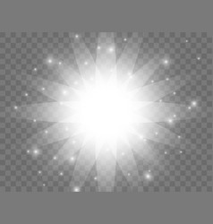 Sunlight on a transparent background vector