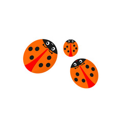the funny family of ladybirds is isolated on a vector image