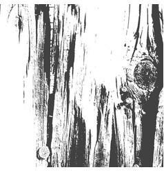 Tree texture tree background tree effect vector
