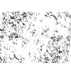 black ink splatter vector image