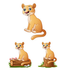 Cartoon lioness on log collections set vector