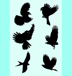 cute birds silhouette vector image