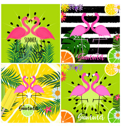 Cute pink flamingo summer background collection vector