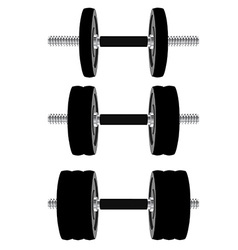 Dumbbell set vector image