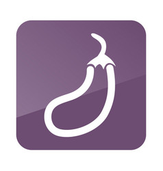 Eggplant outline icon vegetable vector