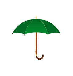 umbrella in green design vector image
