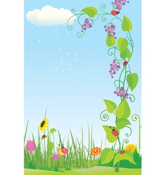 Flower meadow with ladybug vector image