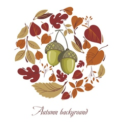 Autumn leaves with acorn vector