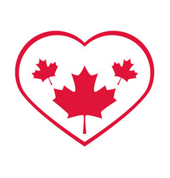 canada day maple leaves in heart love country vector image