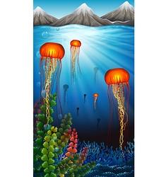Jellyfish swimming under the ocean vector