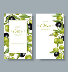 Olive horizontal banner vector