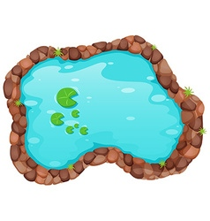 Small pond vector