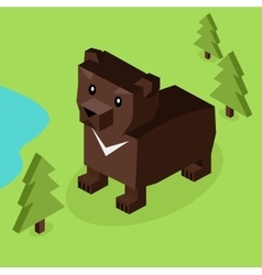 Wild Animal Bear Isometric 3d Design vector