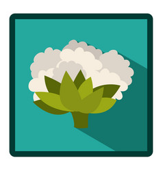 symbol cauliflower icon image vector image