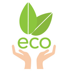 eco hand with leaves helping nature concept vector image vector image