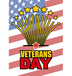 Veterans Day Salute honoring American heroes on vector image vector image