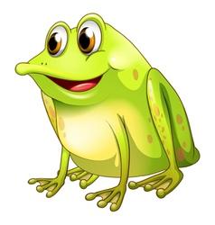 a green bullfrog vector image