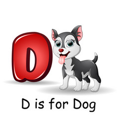 Animals alphabet d is for dogs vector