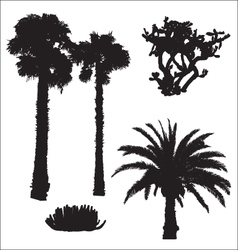 black silhouettes of palms and cacti vector image