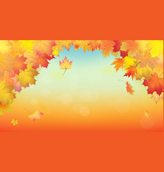 Maple leaves autumn foliage background pattern vector