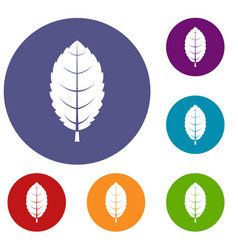 plum leaf icons set vector image