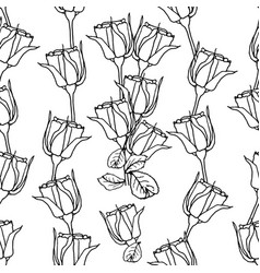 seamless pattern with liner black roses on white vector image