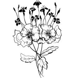 viola bouquet vector image