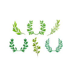 Wreaths or chaplets leaves and branches vector