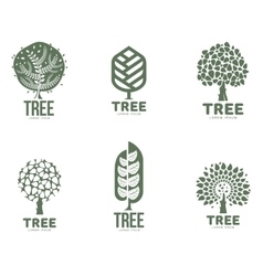 Set of stylized abstract graphic tree logo vector image vector image
