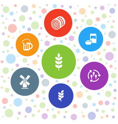 7 wheat icons vector