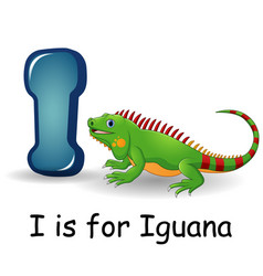 Animals alphabet i is for iguana vector