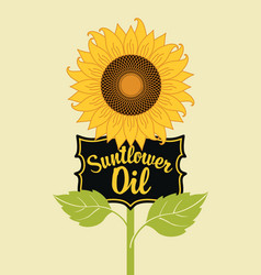 banner for sunflower oil with a big flower vector image