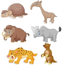 Cartoon animal collection set vector