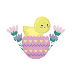 cute chicken of easter in egg with flowers vector image