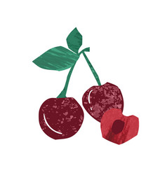 fresh whole and half sweet cherry flat vector image