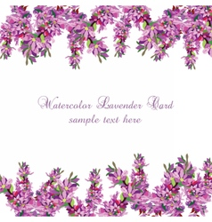 Lavender card borde vector