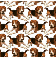Seamless background with beagles vector