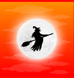 witch on a broom vector image