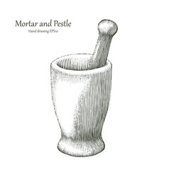 mortar and pestle hand drawing engraving style vector image vector image