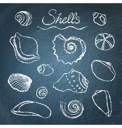 Set of shells on chalkboard vector image vector image