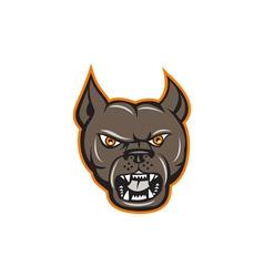 Pitbull Dog Mongrel Head Angry Cartoon vector image