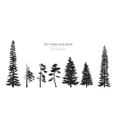 Black silhouettes of fur-trees and pines vector