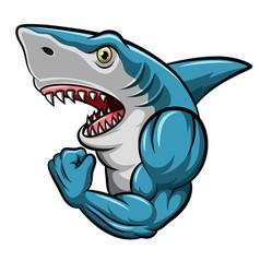 cartoon strong shark mascot design vector image