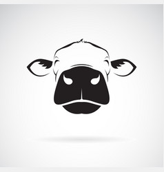 cow head design on a white background animals vector image