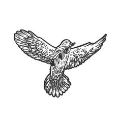 dove with olive branch sketch vector image